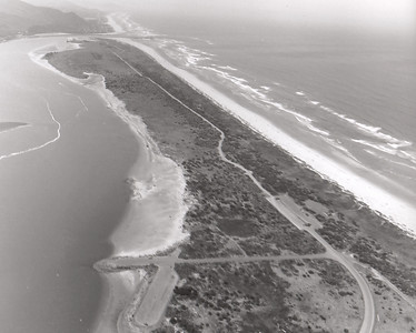 Thirty years after planting began, the spit seems covered in vegetation. This image shows the road to the end of the spit built for access to repair the north jetty.
