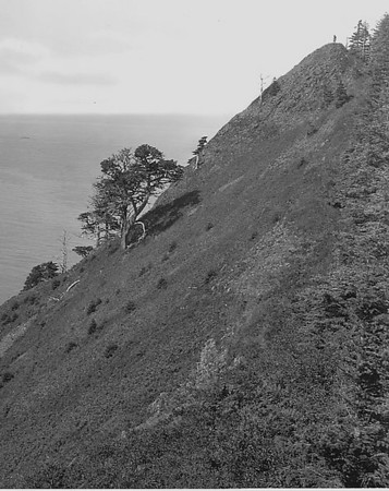 In 1909 top of Neahkahnie offered a grand vista south along the coast.