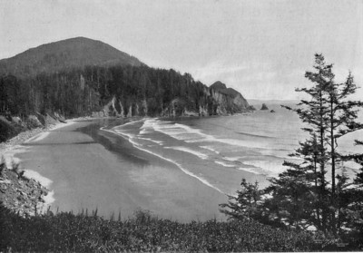 In the early 20th century, Neahkahnie Mountain had far fewer trees than today. Loggers had cut the mountain's north side. Sheep had grazed the south side since the 1860s.